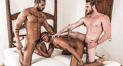 Foda entre machos