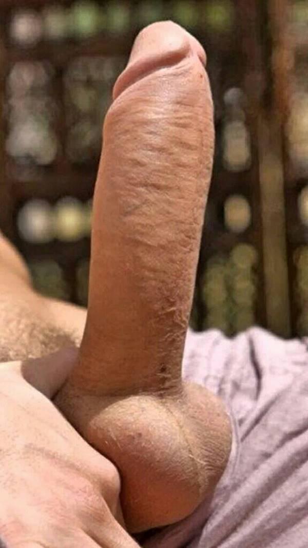 Penis amador