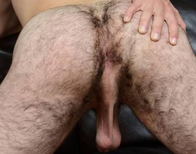 Cu Peludo – Fotos De Bundas Gays Cabeludas